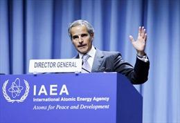 IAEA: Thỏa thuận tàu ngầm AUKUS 'làm khó' các thanh sát viên hạt nhân