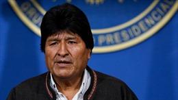 Tổng thống, Chủ tịch Thượng viện Bolivia từ chức