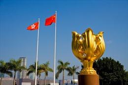 Trung Quốc kịch liệt phản đối Mỹ ban hành Luật Dân chủ và Nhân quyền Hong Kong