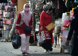 COVID-19 tại ASEAN hết 24/7: Toàn khối 234.503 người mắc bệnh, ca tử vong ở Indonesia vẫn tăng mạnh