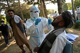 COVID-19 tới 6 giờ sáng 8/8: Thế giới gần 19,5 triệu ca bệnh; Nga chế tạo thành công vaccine