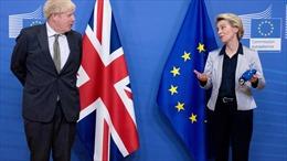 Thỏa thuận hậu Brexit giữa Anh và EU gặp 'vướng mắc vào phút chót'