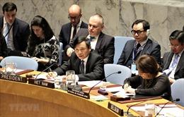 Việt Nam sẵn sàng hoàn thành tốt vai trò Chủ tịch HĐBA LHQ