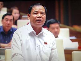 Bộ trưởng Nguyễn Xuân Cường: 'Dập dịch tả lợn châu Phi  như diệt giặc'