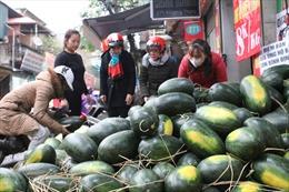 Xuất khẩu nông sản mùa dịch nCoV, tăng cường chế biến và tạm trữ ở hệ thống kho lạnh