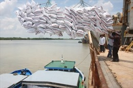Xuất khẩu gạo trở lại từ ngày 1/5