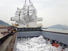 Tạm ứng hạn ngạch 100.000 tấn cho doanh nghiệp có gạo đưa vào cảng trước 24/3/2020 nhưng chưa đăng ký tờ khai