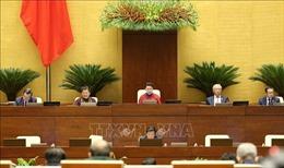 Khai mạc Kỳ họp thứ 9, Quốc hội khóa XIV, Trưởng ban Dân nguyện Quốc hội làm Bí thư Tỉnh ủy Thái Nguyên
