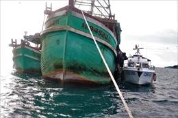 Cảnh sát biển tạm giữ hai tàu cá có hành vi mua bán, vận chuyển dầu D.O trái phép
