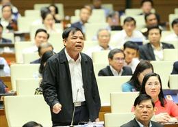 Đại biểu Quốc hội: Phân bón, hóa chất độc hại như mê hồn trận trong nông nghiệp