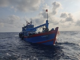 Cảnh sát biển tạm giữ tàu cá cải hoán chở 100.000 lít dầu DO không rõ nguồn gốc