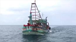 Cảnh sát biển bắt giữ nhiều tàu chở dầu trái phép trên biển