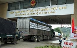 Đề nghị cơ quan chức năng phân 'luồng xanh' cho quả vải xuất khẩu qua biên giới