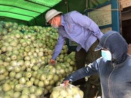 Không quản nắng 40 độ C, hết lòng hỗ trợ nông dân Bắc Giang tiêu thụ nông sản