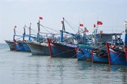 Thủ tướng đồng ý bổ sung hơn 462 tỷ đồngthực hiện một số chính sách phát triển thủy sản