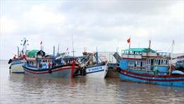 Ngư dân ngừng ra khơi để phòng chống dịch