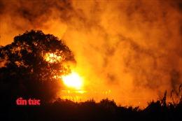 3 giờ khống chế biển lửa nhấn chìm nhà xưởng ở TP Hồ Chí Minh