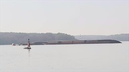 Hạn chế lưu thông hàng hải trên sông Lòng Tàu từ 1 giờ 50 phút ngày 19/10