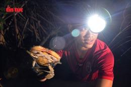 Săn đặc sản ở rừng đước nơi cực Nam Tổ quốc