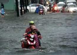 Mưa lớn kéo dài, TP Hồ Chí Minh lại ngập lụt, đổ cây, tắc đường