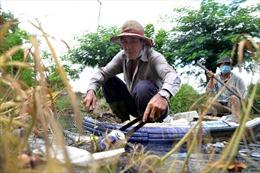 Ông lão gần 4 năm miệt mài vớt rác, làm sạch dòng kênh đen giữa lòng TP Hồ Chí Minh