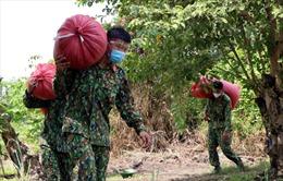 Bộ đội hỗ trợ người dân TP Hồ Chí Minh thu hoạch lúa
