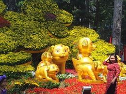 3.000 kì hoa dị thảo hội tụ tại Hội hoa Xuân TP Hồ Chí Minh 2019