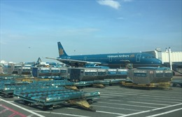 Hai hãng hàng không mới đủ điều kiện để xin chấp thuận