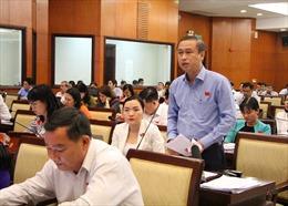 HĐND TP Hồ Chí Minh bàn giải pháp bảo tồn các di sản văn hóa