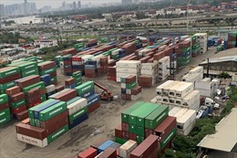 TP Hồ Chí Minh có 266 doanh nghiệp vi phạm về luật hải quan
