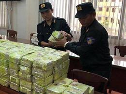 TP Hồ Chí Minh nỗ lực kéo giảm tội phạm liên quan đến ma túy