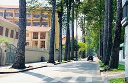 Đường phố trung tâm TP Hồ Chí Minh vắng vẻ trong ngày 30/4