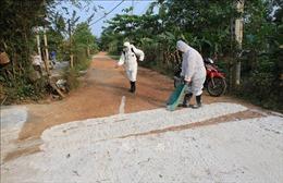 Thừa Thiên - Huế giám sát chặt ổ dịch tả lợn châu Phi mới xuất hiện