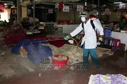 Theo sát diễn biến thị trường, không để xảy ra tình trạng bất ổn đối với mặt hàng thịt lợn