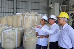 Đánh giá tiến độ triển khai dự án bô xít tại Đắk Nông