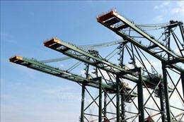 Xuất cẩu trục siêu trọng container 'Made in Vietnam' sang Ấn Độ