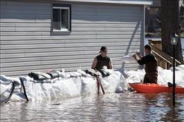 Vỡ đê ở Canada, 5.000 dân phải đi sơ tán