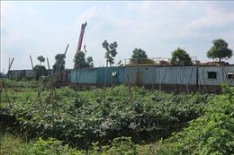 Hàng nghìn mét vuông đất nông nghiệp ở Hà Nội bị sử dụng sai mục đích