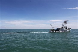 Cấm đánh bắt hải sản tại Vịnh Thái Lan trong vòng 3 tháng