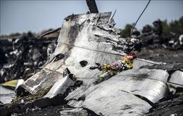 Chuyên gia Nga hoài nghi tính xác thực của thông tin mới trong vụ máy bay MH17