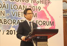 Doanh nghiệp Việt thiếu quan tâm bảo hộ kiểu dáng, nhãn hiệu hàng hóa
