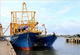Bất cập triển khai Nghị định 67: Nhiều tàu cá hàng chục tỷ đồng 'nằm bờ'