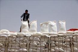 UAE phát động chiến dịch viện trợ tại Yemen