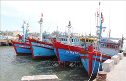 Sớm hoàn thành lắp đặt thiết bị giám sát tàu cá dài trên 24m