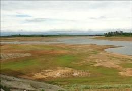 Hạn hán kéo dài ở Quảng Trị, 10.000 hộ dân thiếu nước sinh hoạt