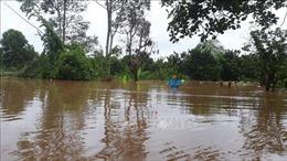 Đồng Nai tiếp tục di dời 1.200 hộ dân do lũ lên cao