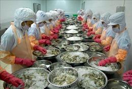 31 doanh nghiệp Việt Nam xuất khẩu tôm sang Mỹ hưởng mức thuế 0%