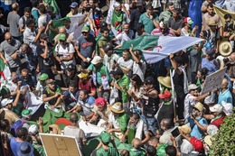 Algeria chưa ấn định được thời gian tổ chức bầu cử tổng thống