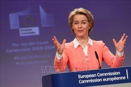 Uỷ ban tư pháp của EP bác bỏ các nhân vật đề cử của Hungary và Romania vào EC