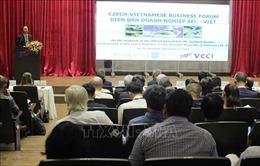 Diễn đàn Doanh nghiệp Việt Nam - Cộng hòa Séc
